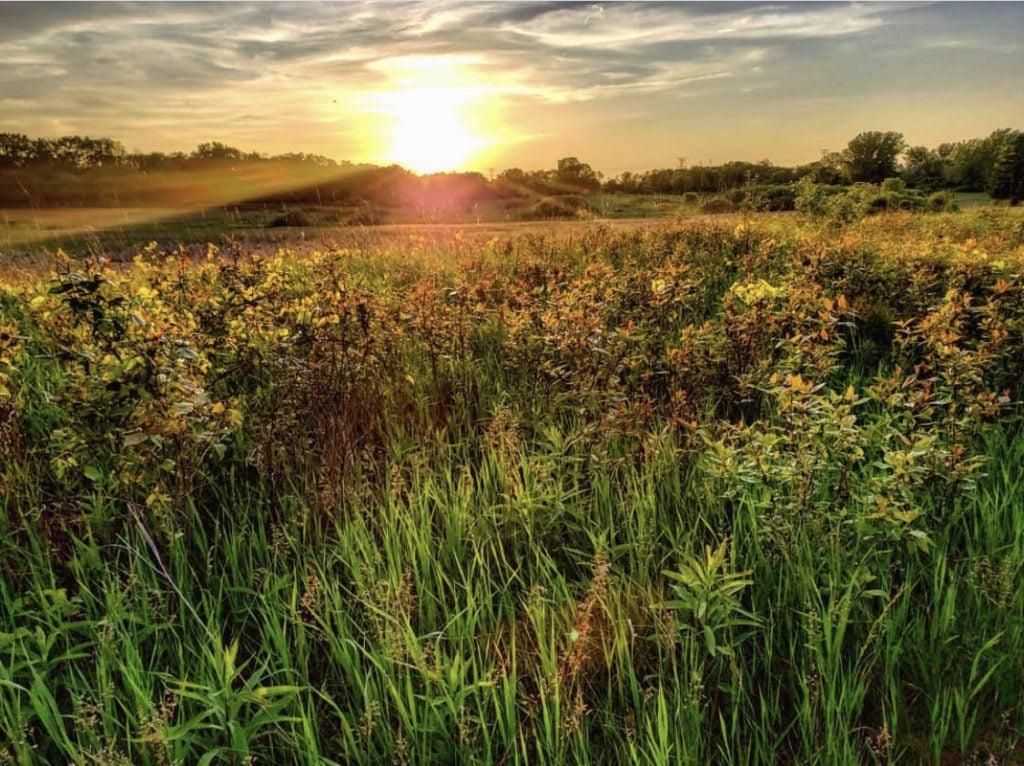 sunset over Havenwoods State Park near Milwaukee, Wisconsin