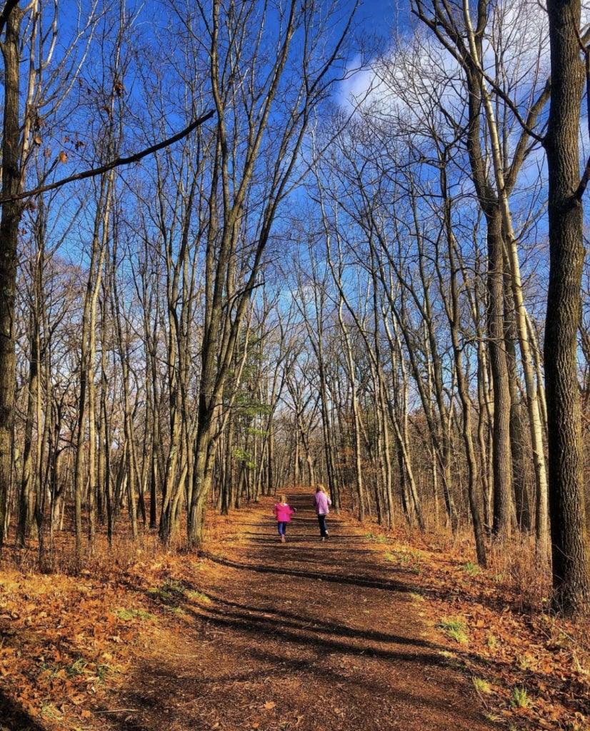 autumn trail at Kettle Moraine State Forest Lapham Peak Unit near Milwaukee Wisconsin