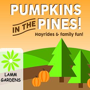 pumpkins lammscapes