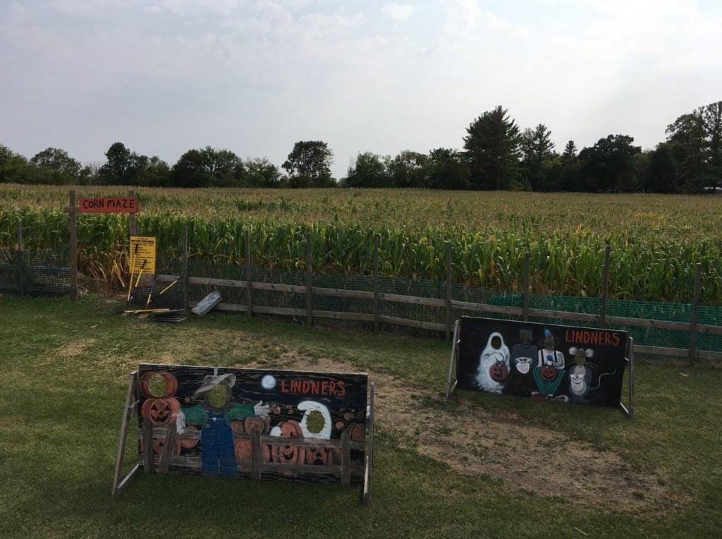 Lindner's Pumpkin Farm corn maze and big backyard New Berlin Wisconsin